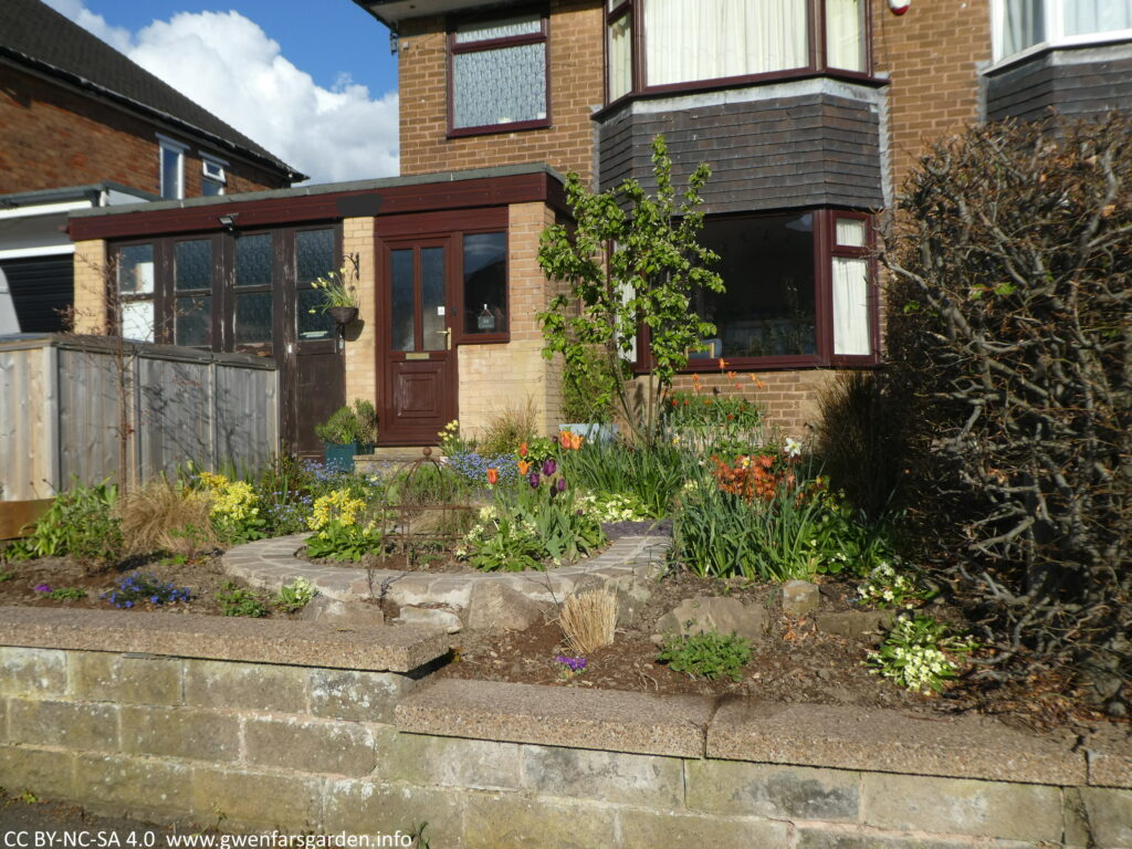 Looking at the front garden from the street, this time the hedge has been removed. The part of the garden next to the street looks a bit bare as the new plants haven't grown much yet, and it definitely needs more Spring bulbs. This time next year it will look fab.
