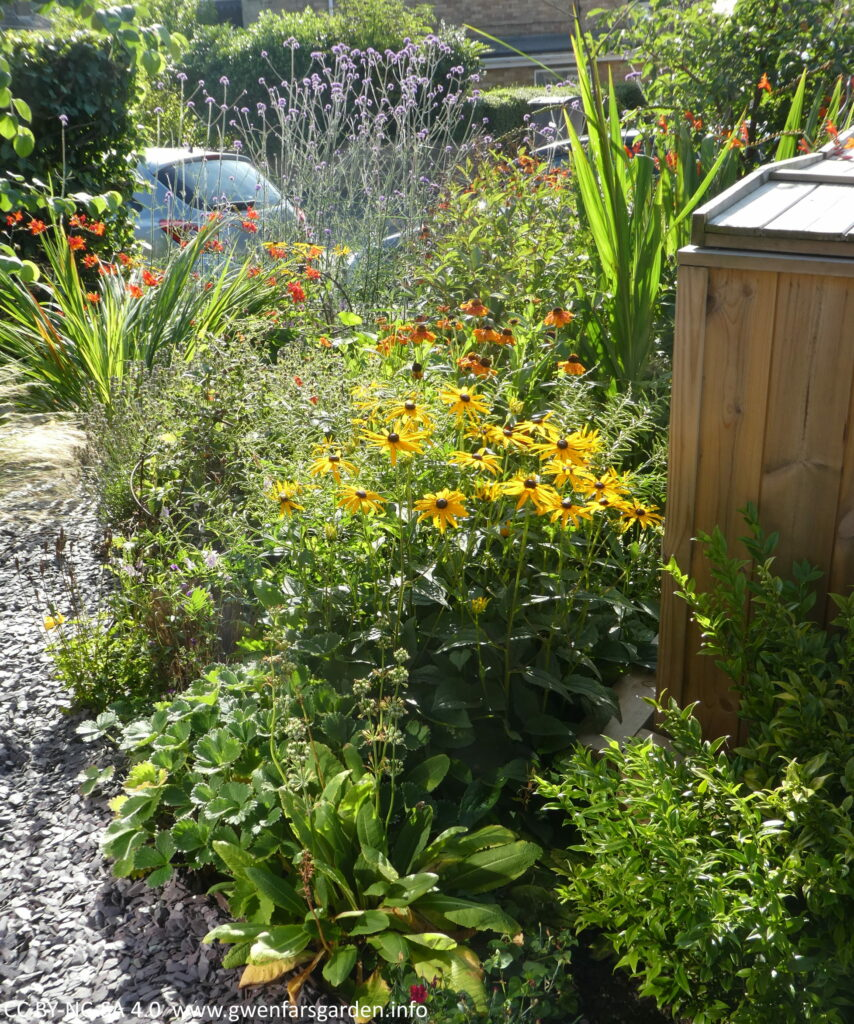 A section of the front garden looking from the house towards the road. It's filled with plants of different colours including yellow, red, orange and purple.