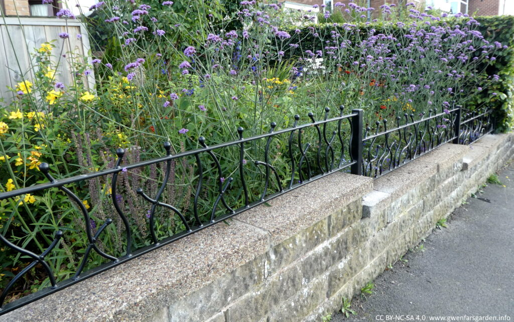 This is just looking at the railings a bit closer and at an angle. You can see lots of plants behind them, including a mesh of tall purple Verbena bonariensis.